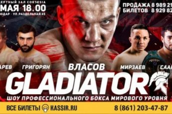 Шоу профессионального бокса